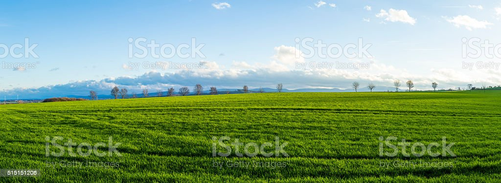 rural landscape with fields stock photo