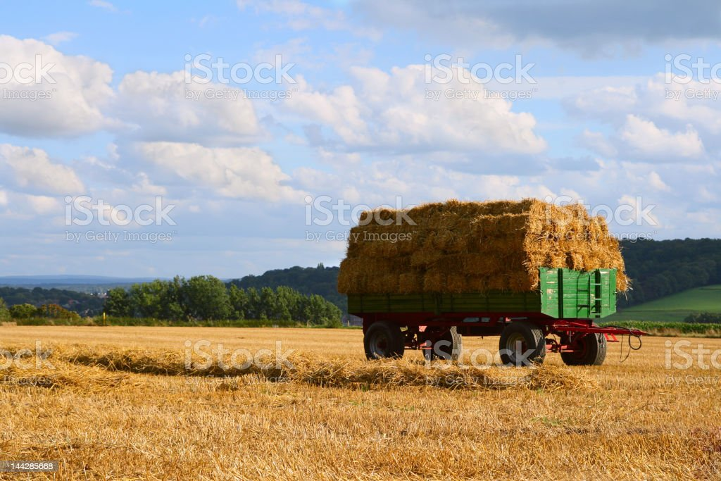 Rural landscape with haystacks royalty-free stock photo