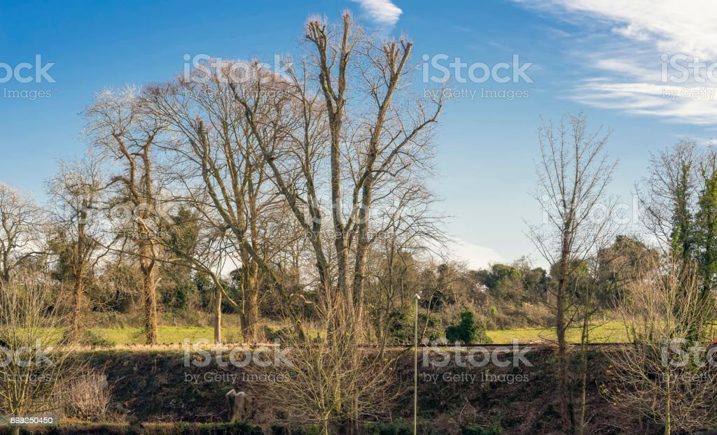 Rural landscape with heritage railway stock photo