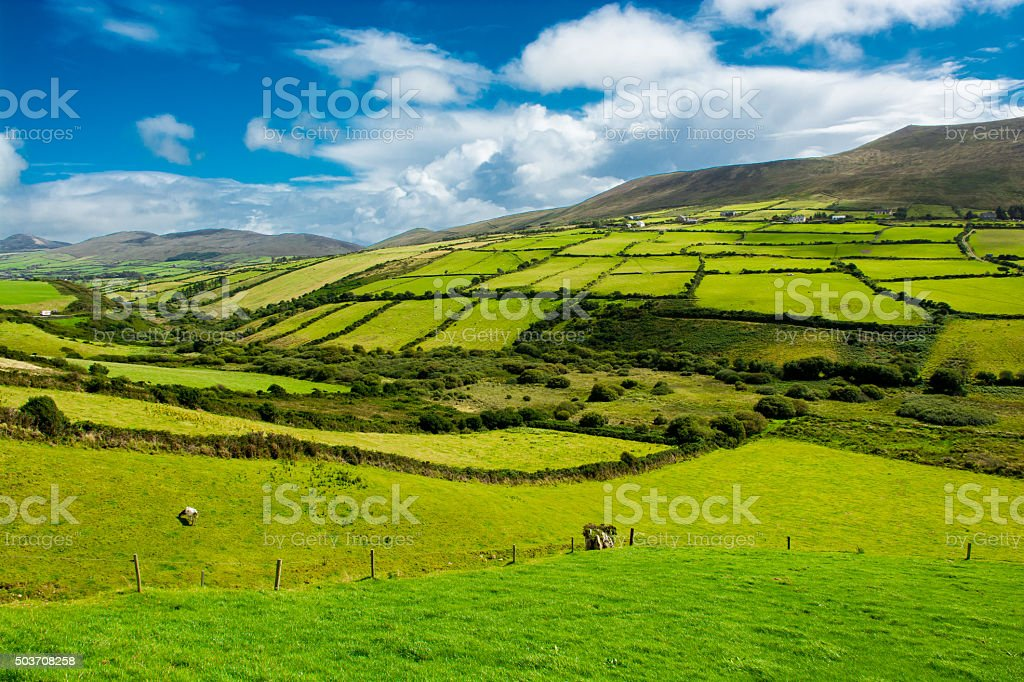 Rural Landscape With Pastures In Ireland stock photo