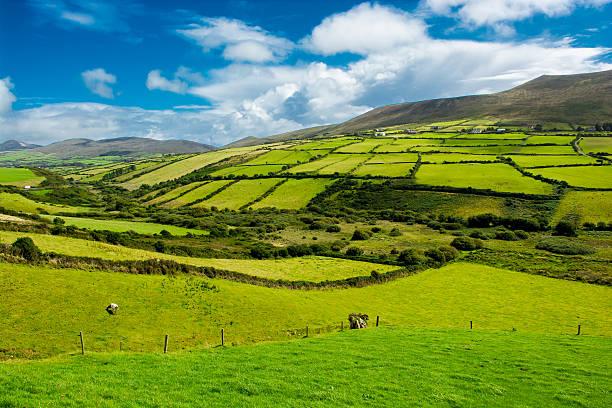 paysage rural avec des pâturages en irlande - irlande photos et images de collection