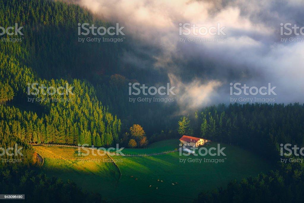 paisaje rural con casa alejada y ganadería - foto de stock