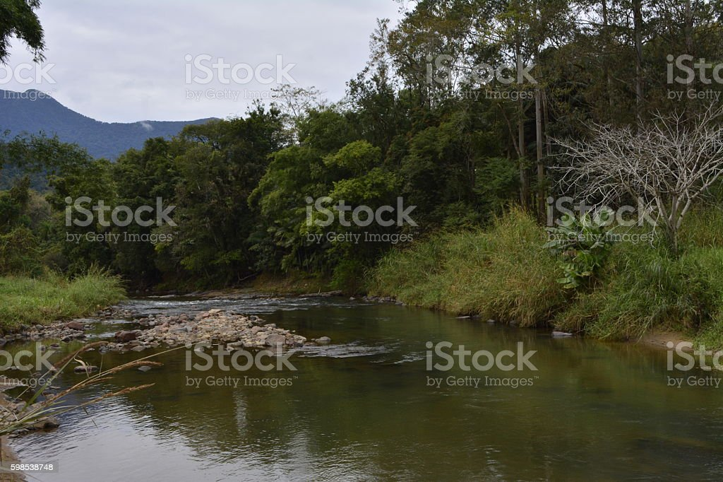 Rural Landscape with River, tree and montain photo libre de droits