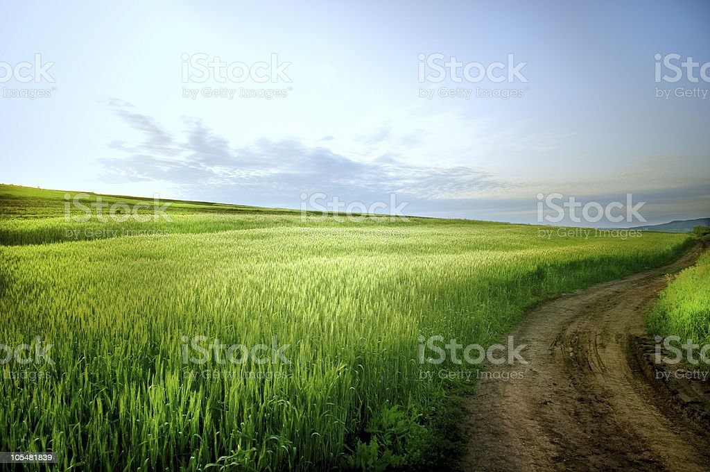 Rural landscape with road royalty-free stock photo