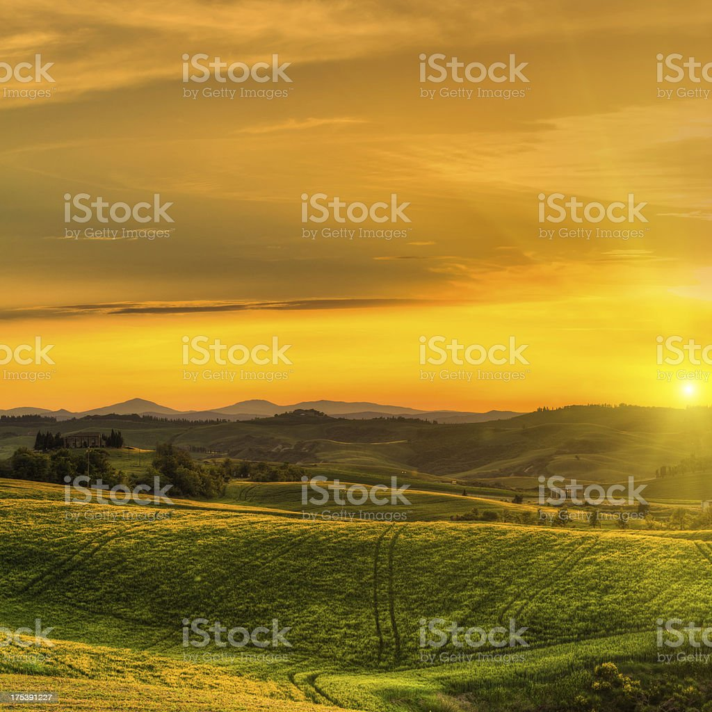 Rural Landscape with Wheat Fields at Sunset in Tuscany royalty-free stock photo