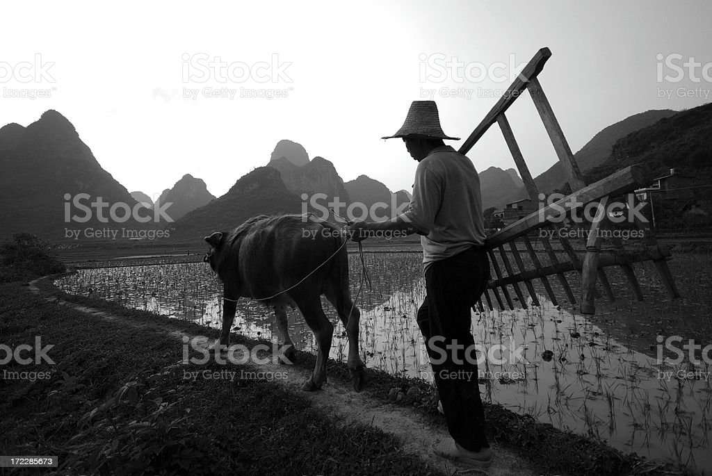 Rural Life royalty-free stock photo