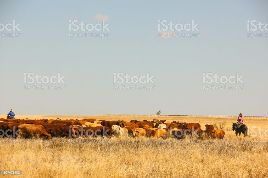 Rural lifestyle stock photo