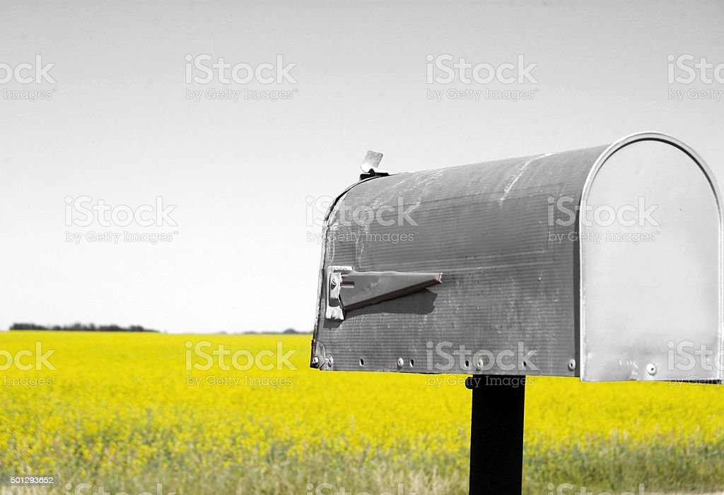 Rural mailbox with a canola field in the background. stock photo