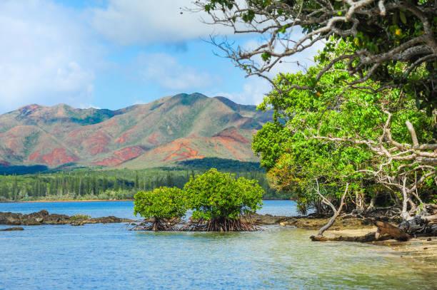 Rural New Caledonia stock photo