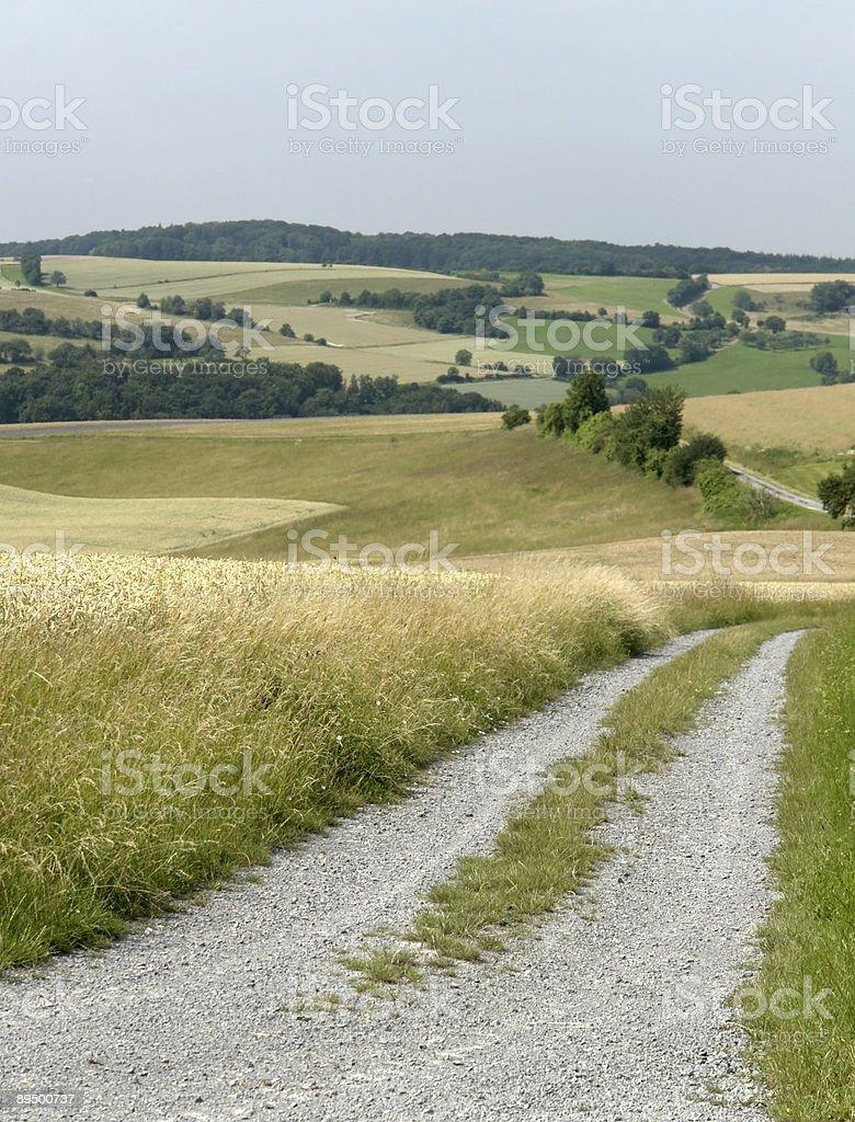 Panoramica del paesaggio con fattoria rurale di foto stock royalty-free