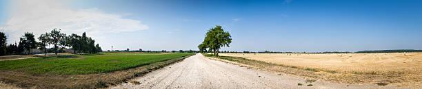 Rural Path stock photo