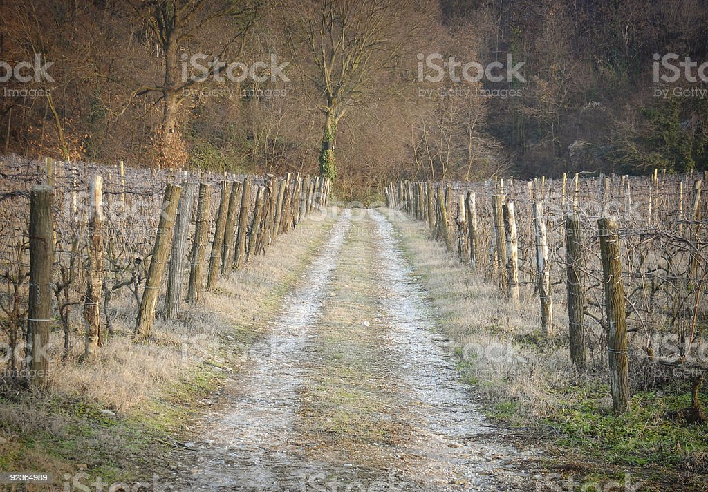 Rural perspective royalty-free stock photo