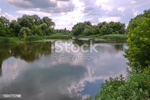 istock Rural pond with reeds growing in it and lilies. A place for recreation of local residents during holidays 1004772768