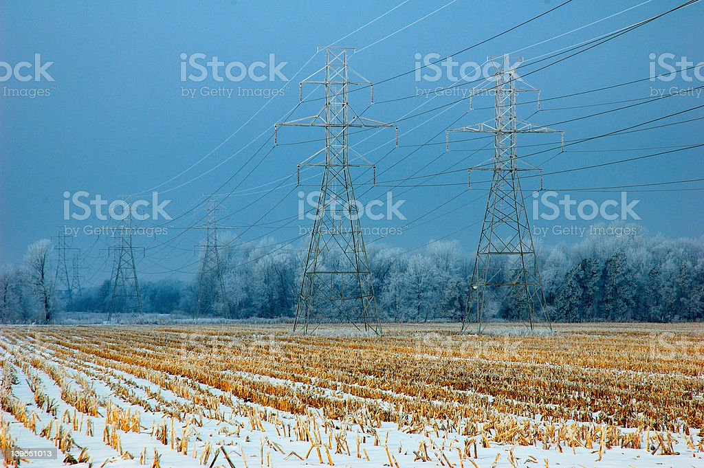 Rural Power Lines with Rime Ice royalty-free stock photo