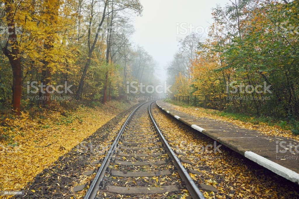 Rural railway station in fog royalty-free stock photo