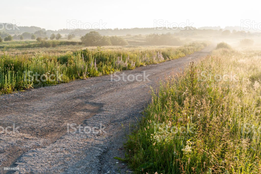 Rural road among meadows in the summer at dawn. stock photo