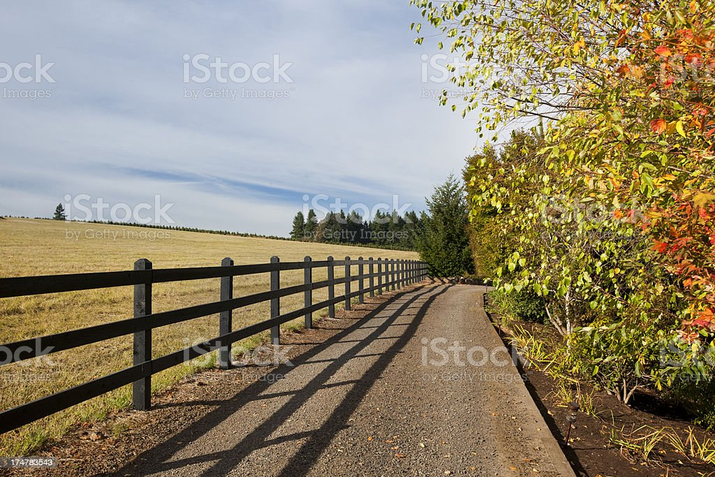 Rural Road and Fence stock photo