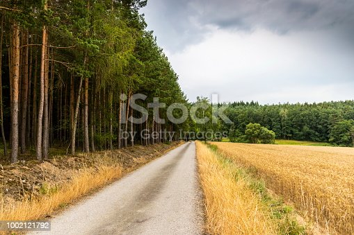 Rural road between forest and field in czech countryside.