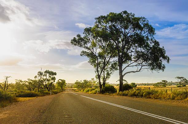 Rural road in Australian Outback stock photo