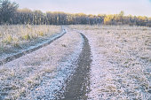 Rural road in frost. Late autumn, Early winter