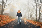 istock Rural road in mysterious fog 636803114