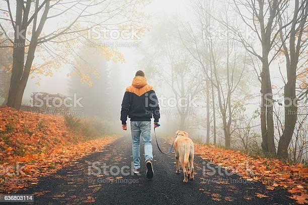 Rural road in mysterious fog picture id636803114?b=1&k=6&m=636803114&s=612x612&h=bzzud4ncb9tfk0ivxujrzcnhhd9ytqncm6gp2atqexu=