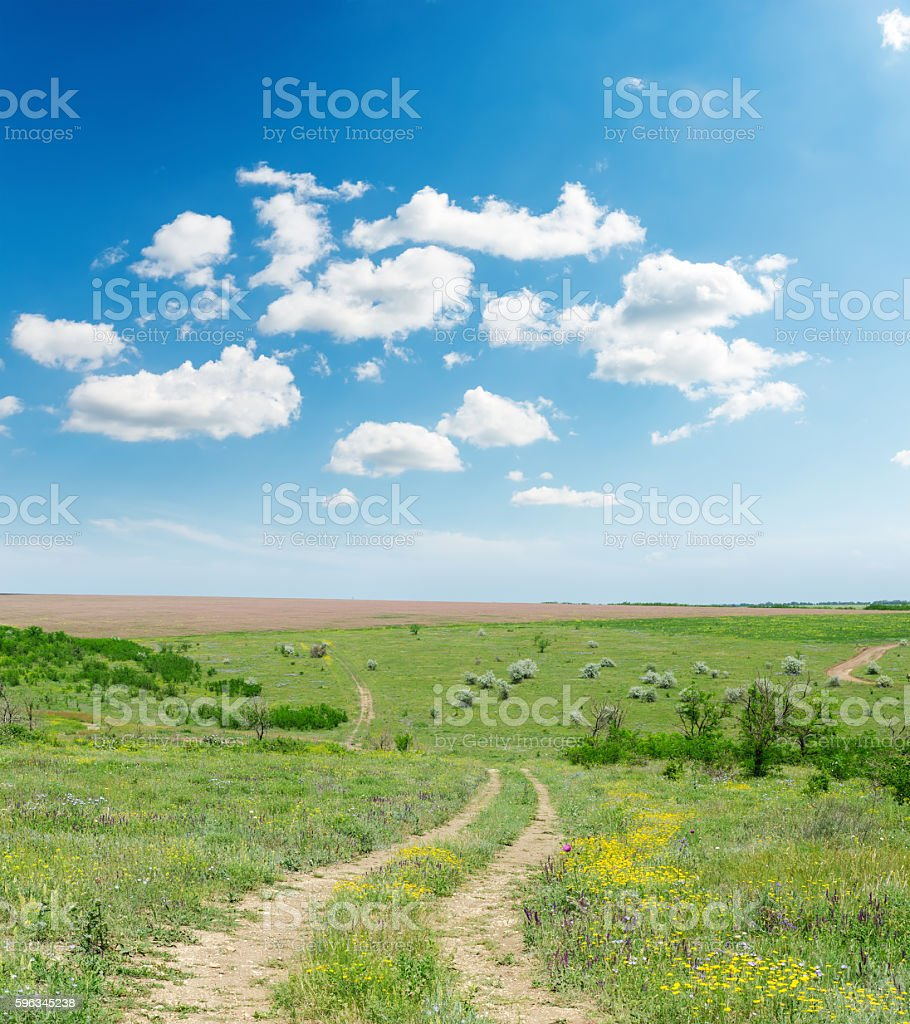 rural road in summer landscape and blue sky with clouds royalty-free stock photo