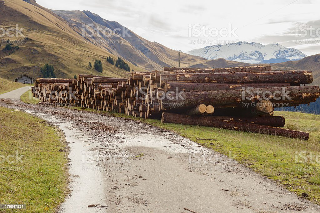 Rural Road in Swiss Alps royalty-free stock photo