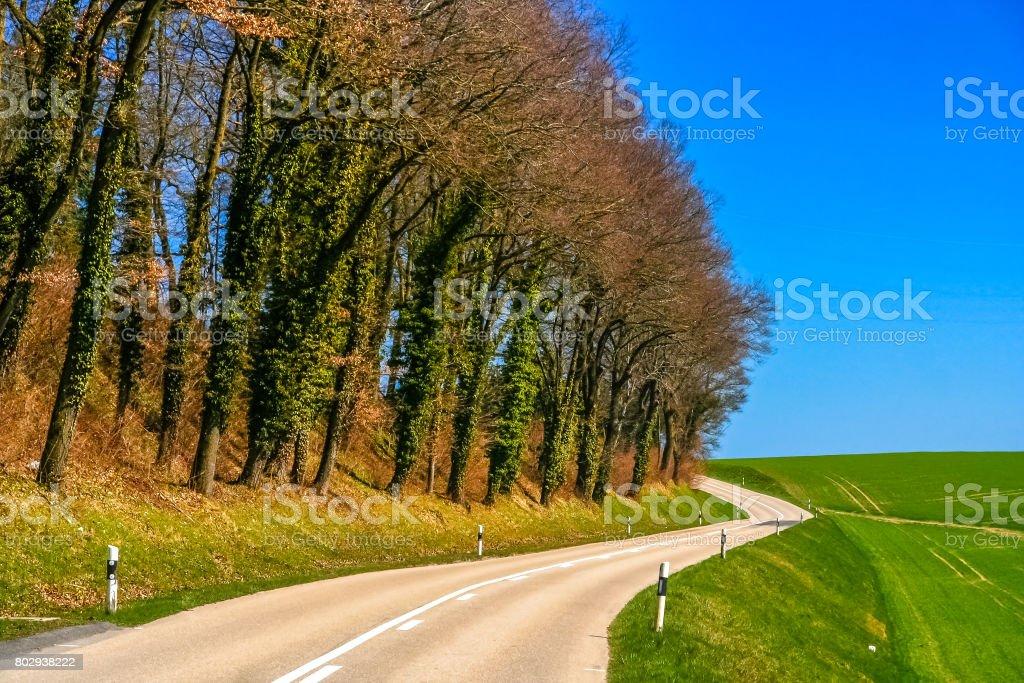 Rural Road in Switzerland stock photo