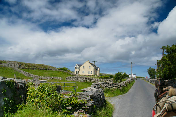 Rural Road, Inishmore, Aran Islands Riding a horse and trap on Cottage Road from Kilronan village, Inishmore, Aran Islands, Country Galway, ireland michael stephen wills aran stock pictures, royalty-free photos & images