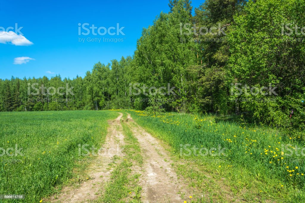 Rural road on the edge of green fields. stock photo
