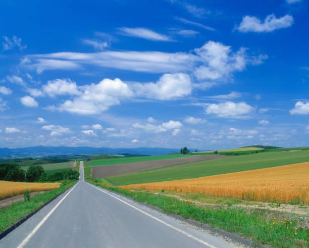 rural road - 北海道 ストックフォトと画像