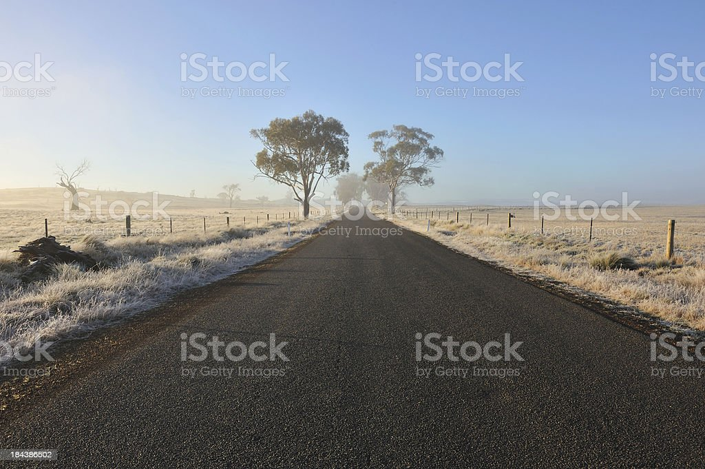 Rural road, Tasmania, stock photo