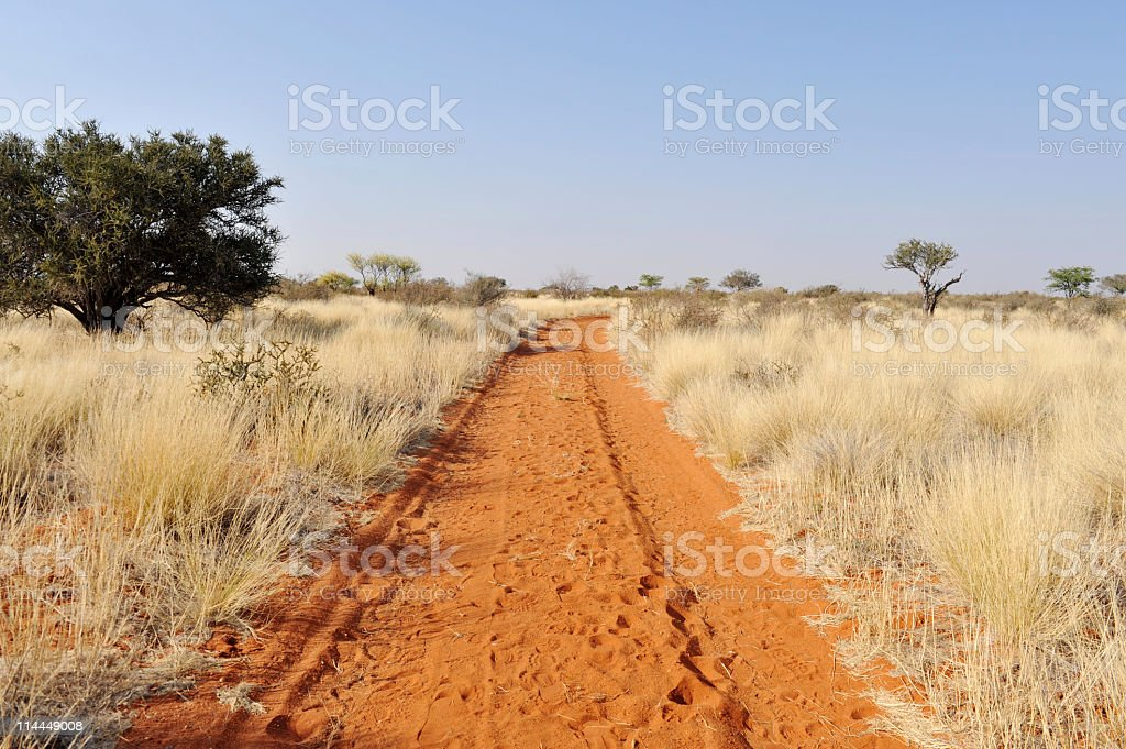 Rural road with red sand in the Kalahari desert, Namibia. stock photo