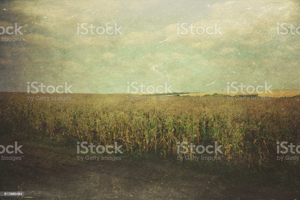 Rural Romania stock photo
