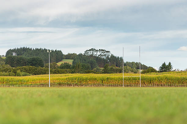 Rural rugby field stock photo