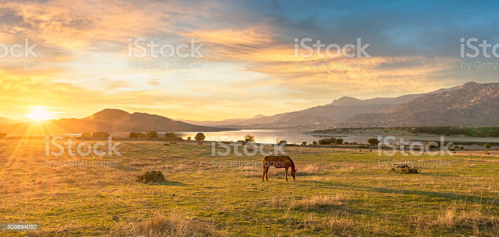 Rural scene at sunset stock photo