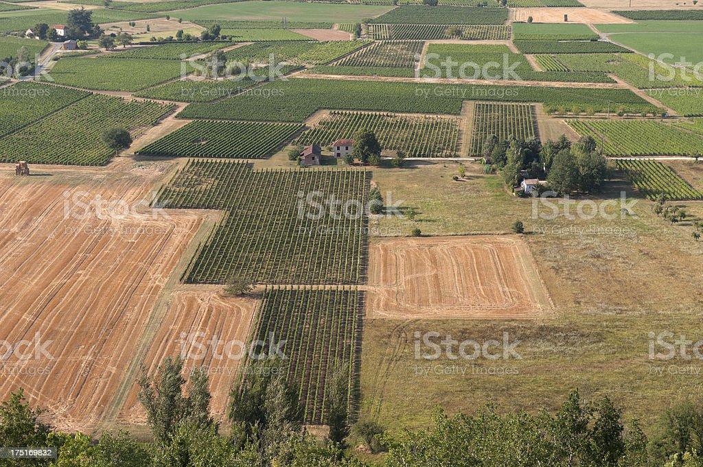 Rural scene. Huts in a Vineyard Landscape stock photo