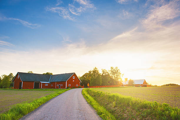 rural scene in sweden - color intensity stock pictures, royalty-free photos & images