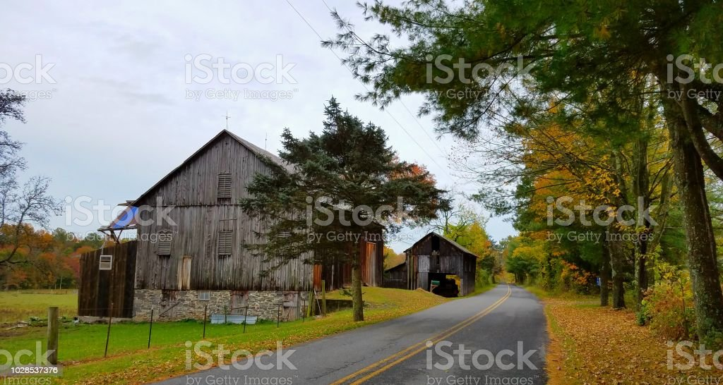 Colors of autumn appear on an old country rural road with a worn barn...