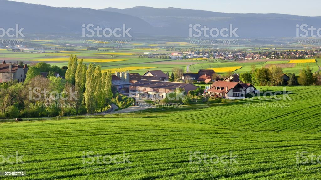 Rural scenery in Switzerland Bavois – Foto