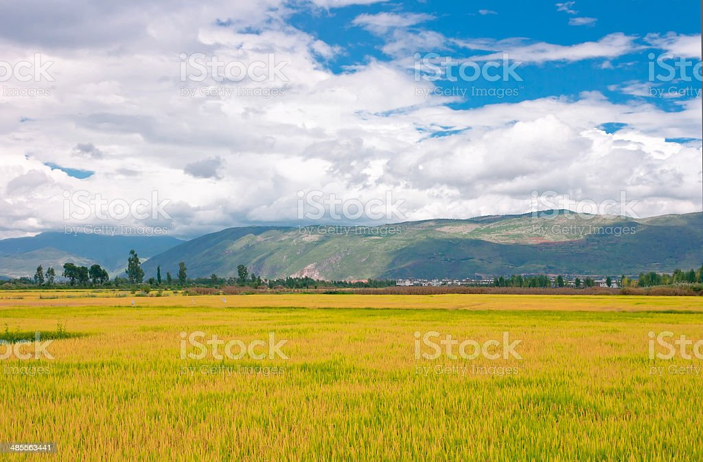 Rural scenery.Taken in the Dali Yunnan China royalty-free stock photo