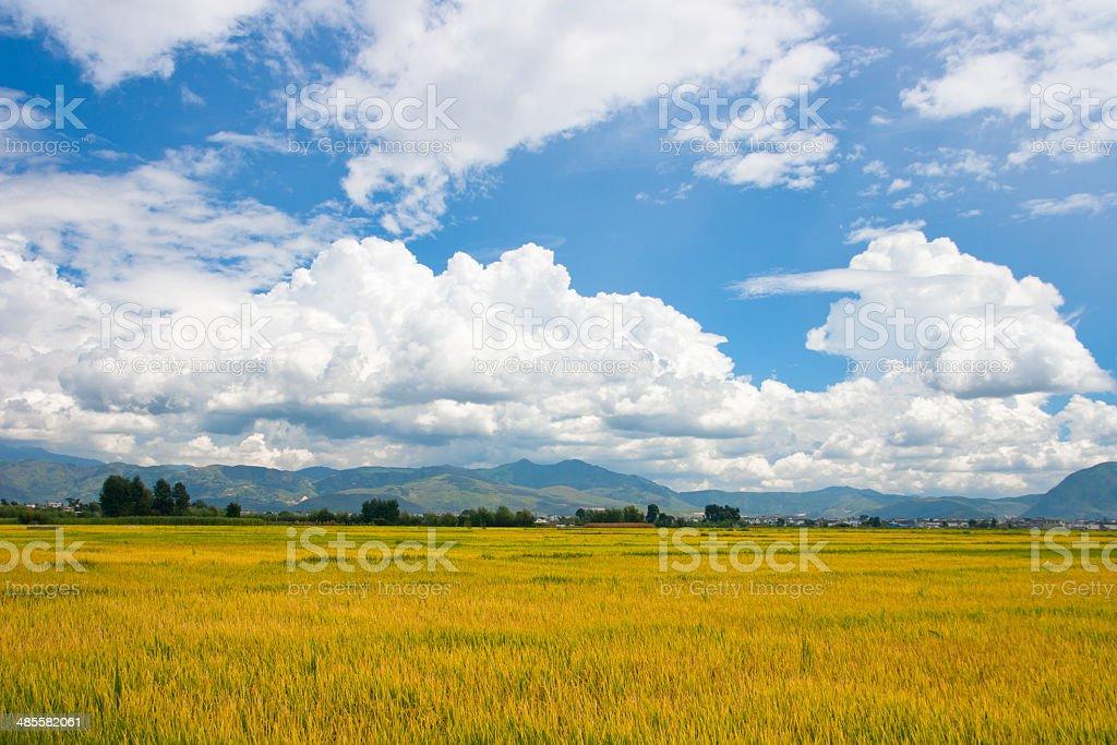 Rural scenery.Taken in the Dali Yunnan China royalty-free stock photo