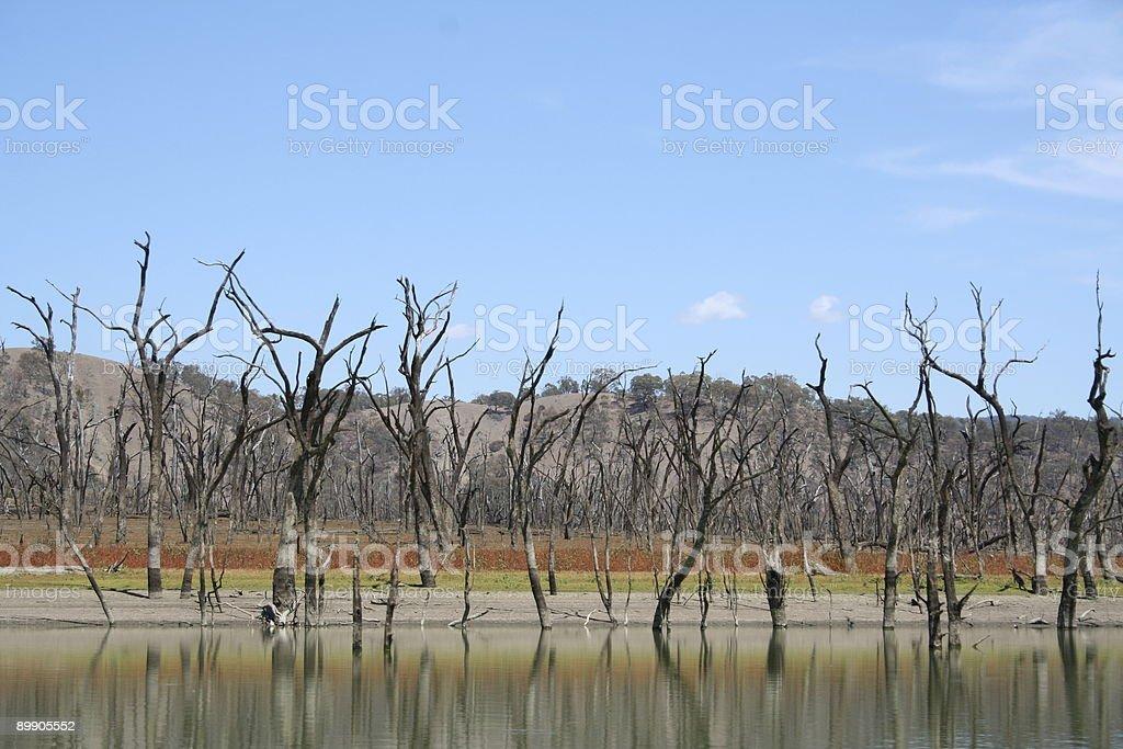 Scena rurale 7 foto stock royalty-free