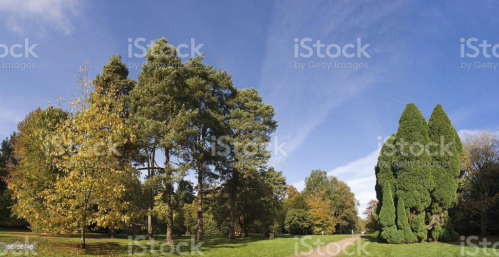 Rural scenic royalty-free stock photo