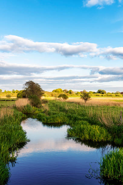 Rural Scottish scene of a small river in the early evening. A non urban scene in rural Dumfries and Galloway in the early evening. The location includes agricultural field and deciduous woodland in the background. johnfscott stock pictures, royalty-free photos & images
