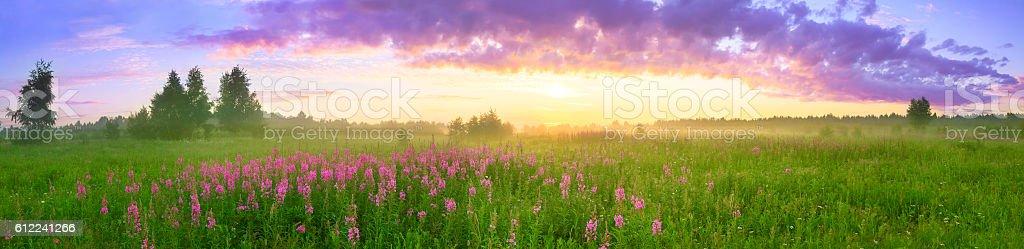 rural summer landscape with sunrise stock photo