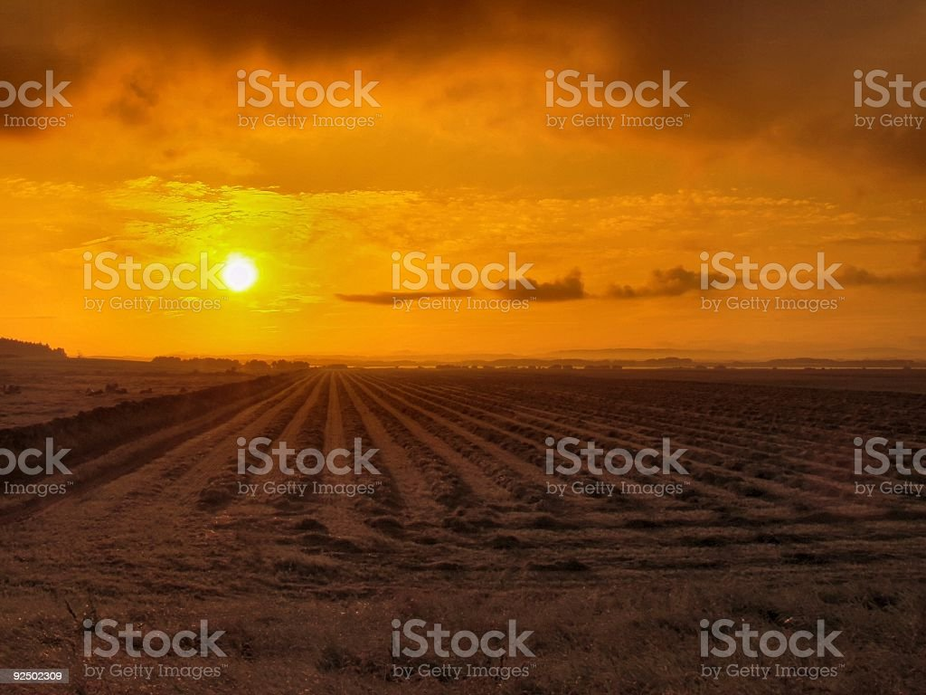 Rural Sunrise royalty-free stock photo