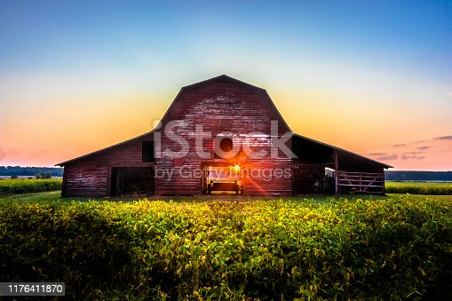 Old Red Barn At Sunset with Soy Beans Ready For Harvest