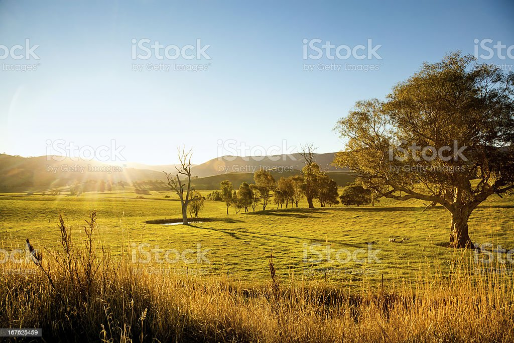 Rural sunset stock photo